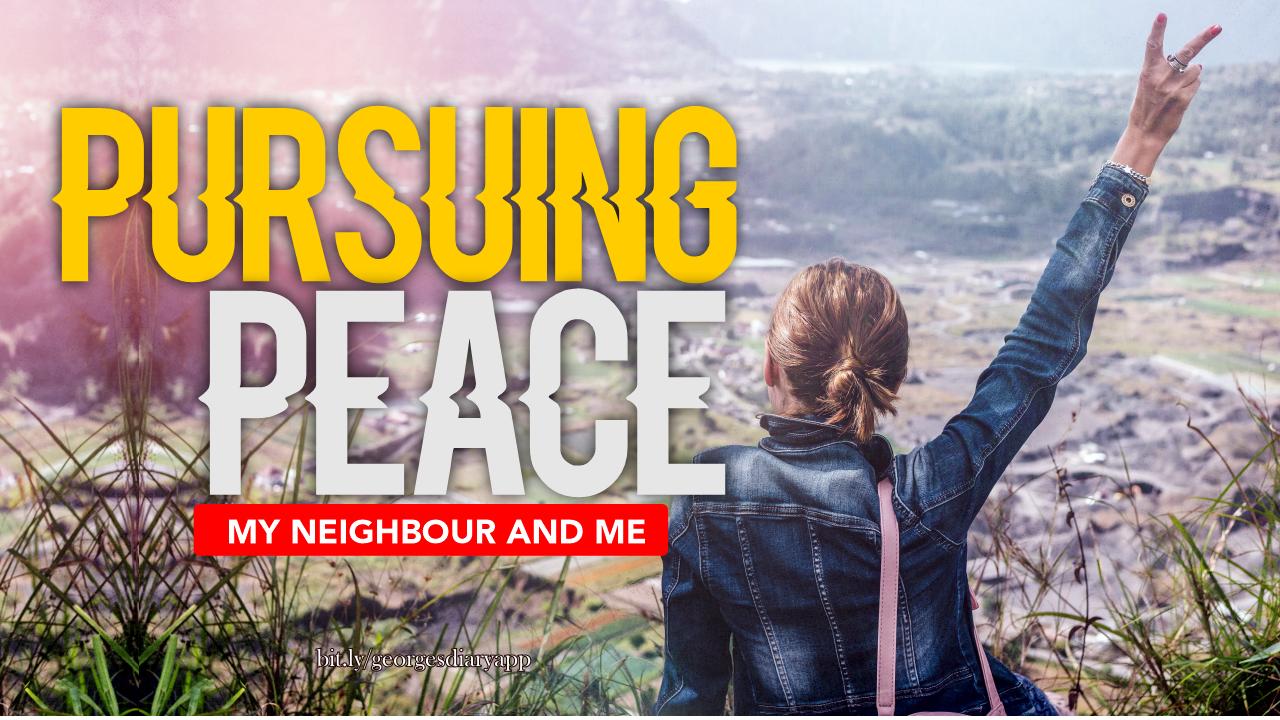 pursue peace