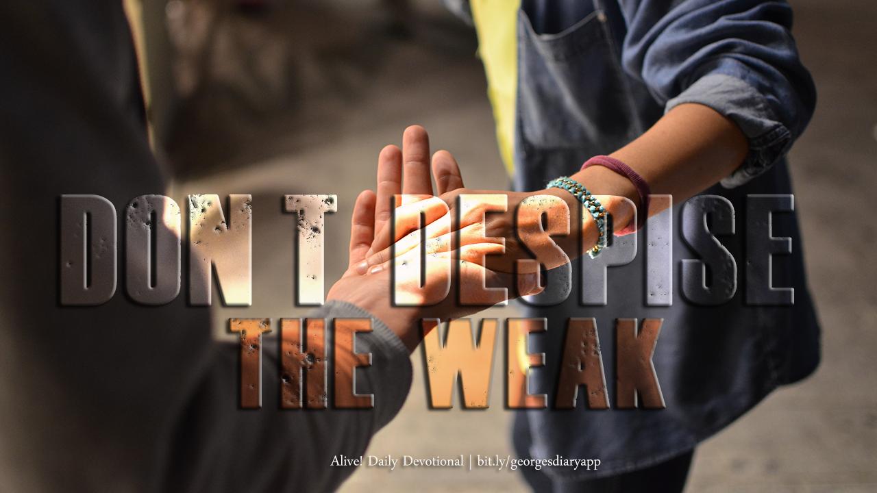 Don't despise the weak